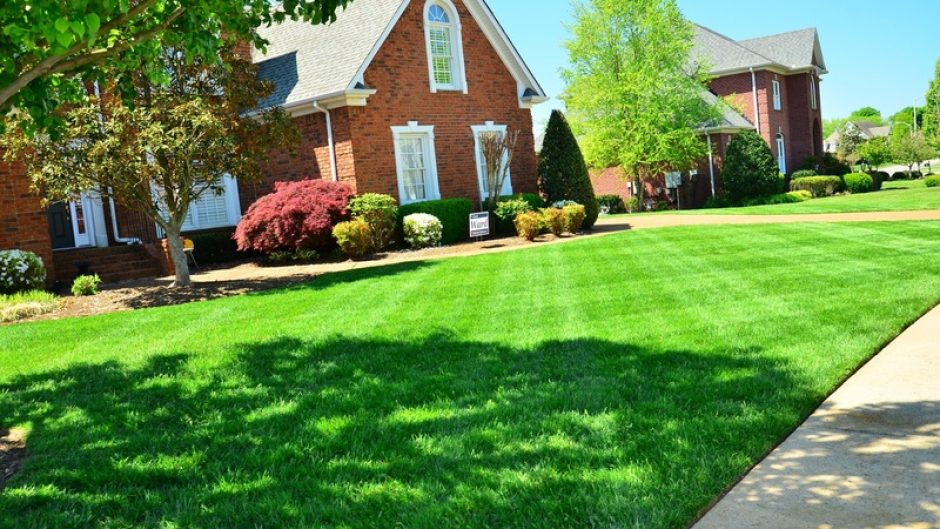 Don't Make These Landscaping Mistakes